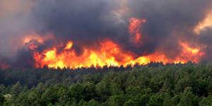 15 hectares de forêt détruits en Charente-Maritime
