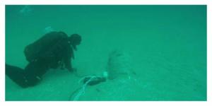 Entre l'île d'Oléron et l'île de Ré, une mine sous-marine a été neutralisée